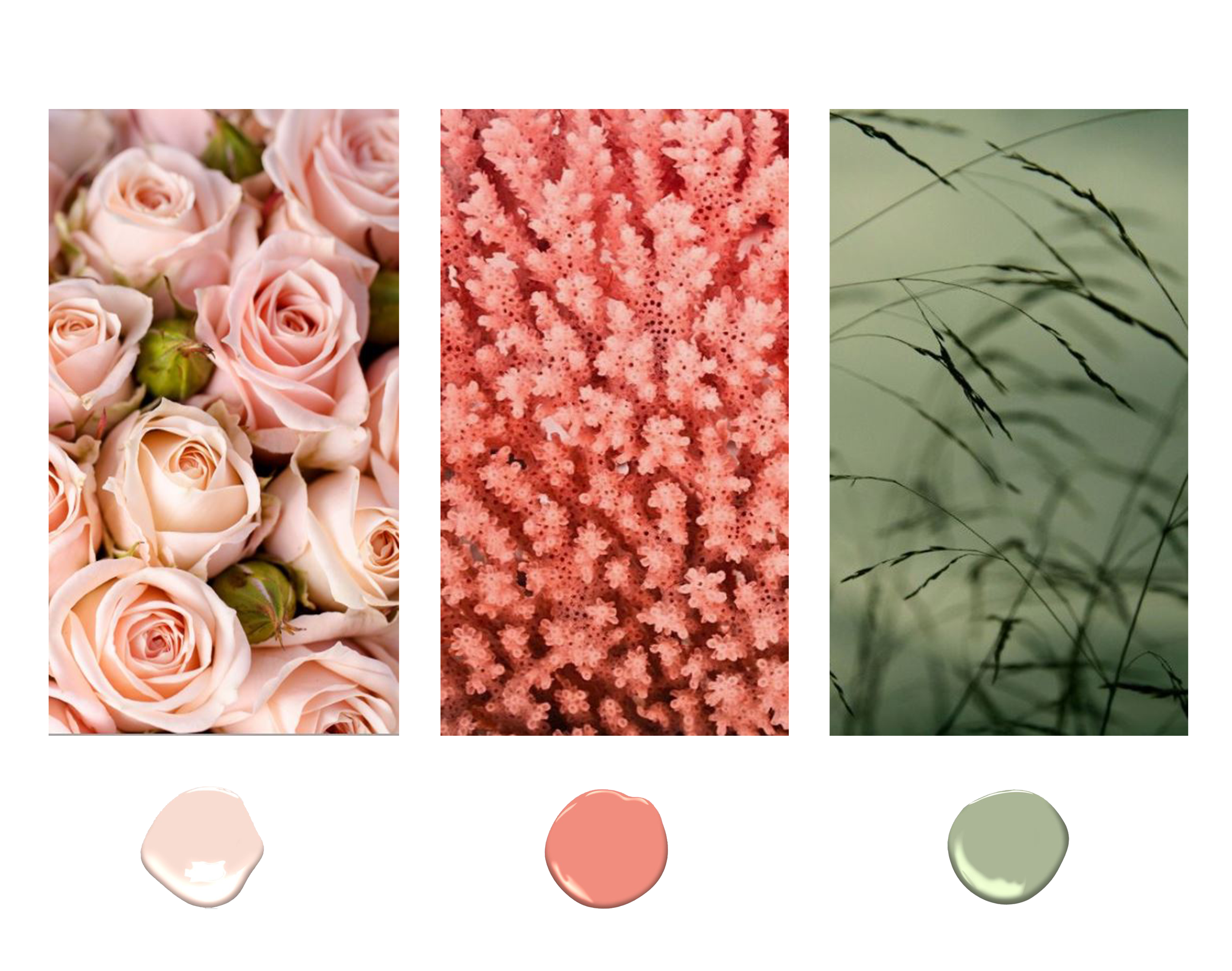 Color samples with fitting immages green coral and light pink - Original Interiors