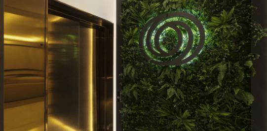 Green plant wall artificial with golden elevator - Original Interiors